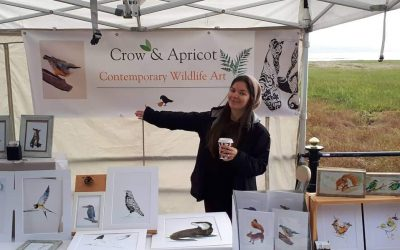 Meet Jo Lord – exhibiting as Crow and Apricot at PromArt